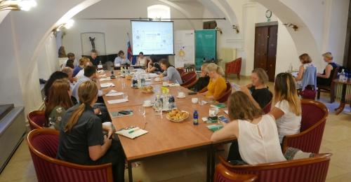 Potencial investicij z družbenim učinkom v Sloveniji