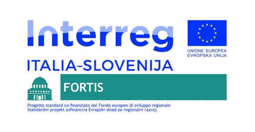 FORTIS: Innovative Solutions to Foster Institutional Cooperation in Cross Border Regions