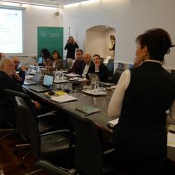 5. sestanek projektnih partnerjev Inter-Connect - nagovor direktorice RRA LUR mag. Lilijane Madjar