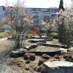 Perfect: Freiburg - primer dobre prakse trajnostnega razvoja april 2019 3