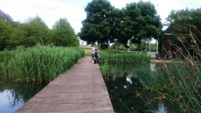 PERFECT – Izkušnje iz Amsterdama