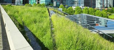 Zelena infrastruktura za blaženje in prilagajanje na podnebne spremembe