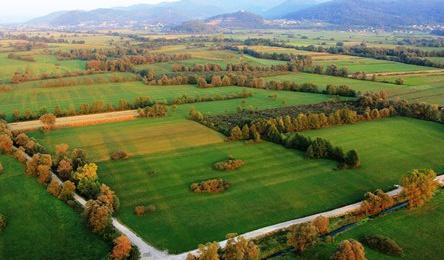Aktivnosti za vzpostavitev glavne vstopne točke v Krajinski park Ljubljansko barje na Rakovi jelši