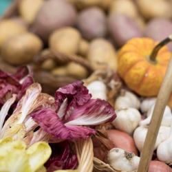 Katalog ponudnikov lokalno pridelanih živil