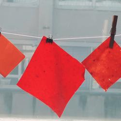 Fruit Fibers: bio tekstilja z vsebnostjo vsaj 75 % sadnih ostankov